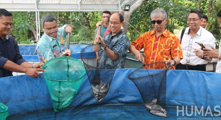 FPIK UNMUL Adakan Panen Raya Ikan Lele Budidaya Sistem Bioflok